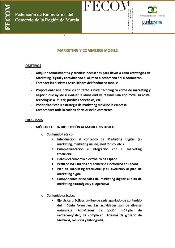 CURSO DE MARKETING Y COMMERCE MOBILE (TELEFORMACION) SUBVENCIONADO